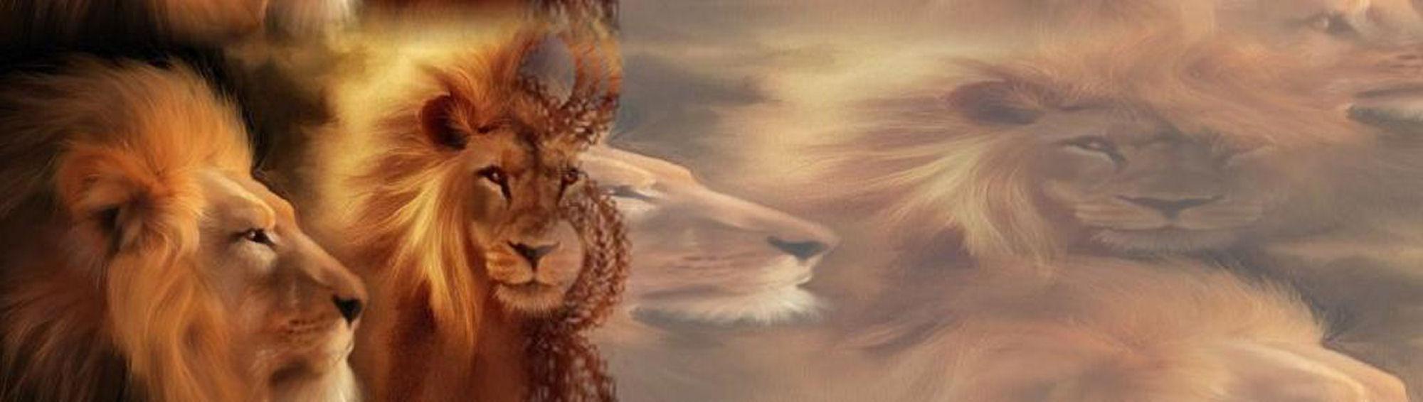 Fondo IM leones_002.imf