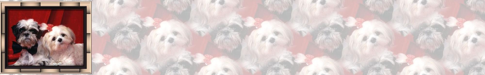 Fondo IM perros_002.imf