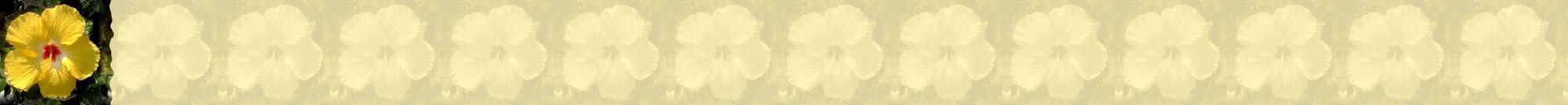 Fondo IM flores_050.imf