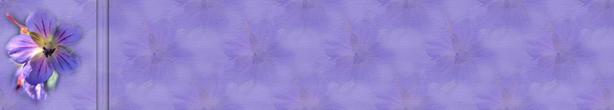 Fondo IM flores_067.imf